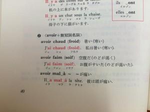 文法書のavoir動詞のページにも記載されている。
